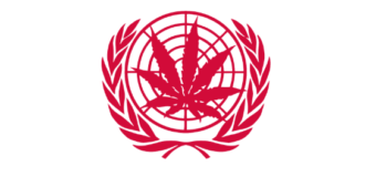 Cannabis within the International Drug Treaty Classification: Towards Descheduling?