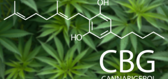 The Cannabinoid of the Future? Hemptown USA at the Forefront of CBG's Rise to Prominence