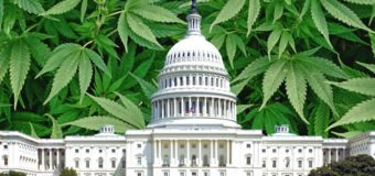 Congress Attaches Marijuana, Hemp And CBD Provisions To Federal Spending Bills