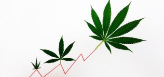 As COVID-19 Rattles Global Markets, Cannabis Commerce Shows Resilience