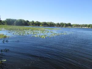 Citrus County lake stop