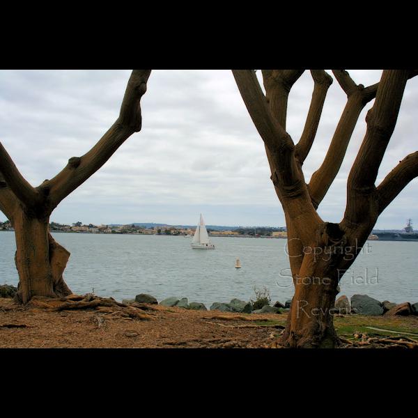 Seaport Villiage