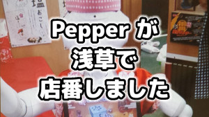 asakusa-pepper-cover