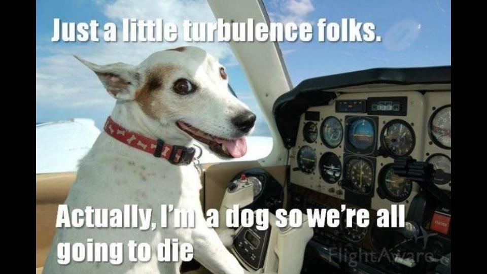 Run a Pilot Program