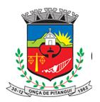 CÂMARA MUNICIPAL DE ONÇA DE PITANGUI
