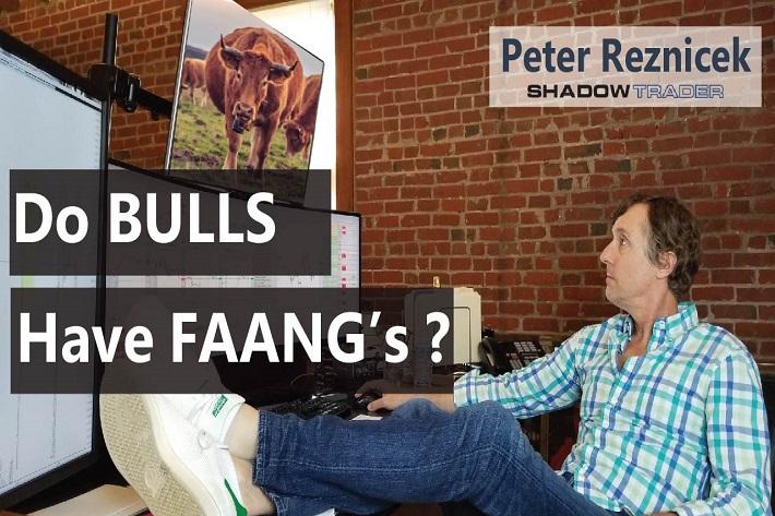 Do Bulls Have FAANG's? | ShadowTrader Video Weekly 04.28.19