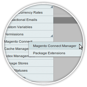 magento connect menu item within system heading