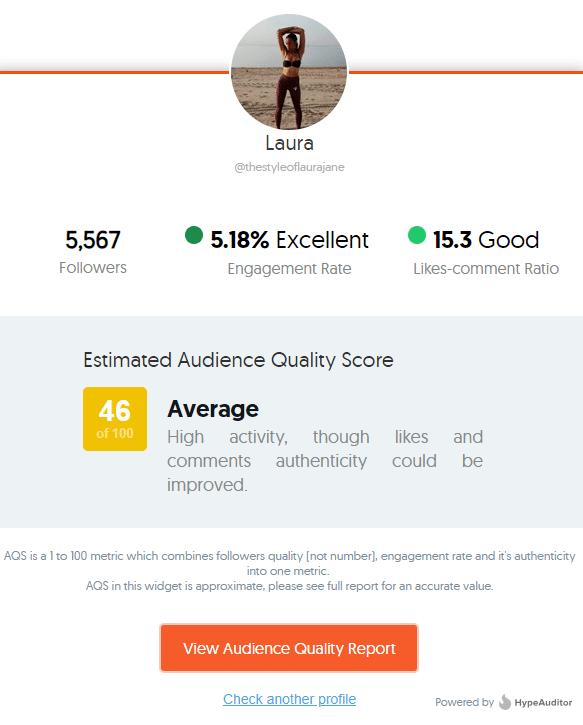 fake-follower-tool