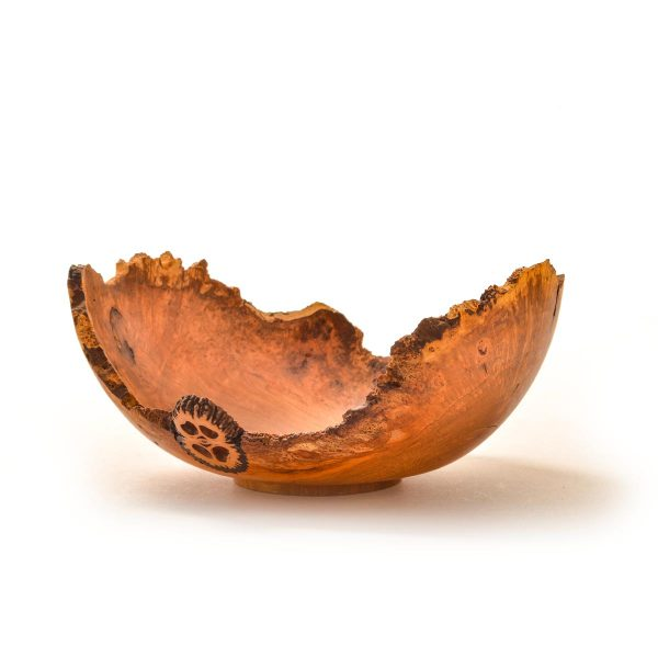 small turned cherry burl bowl with 2 slices of walnut