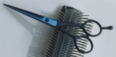 Joewell Titan TR Scissor