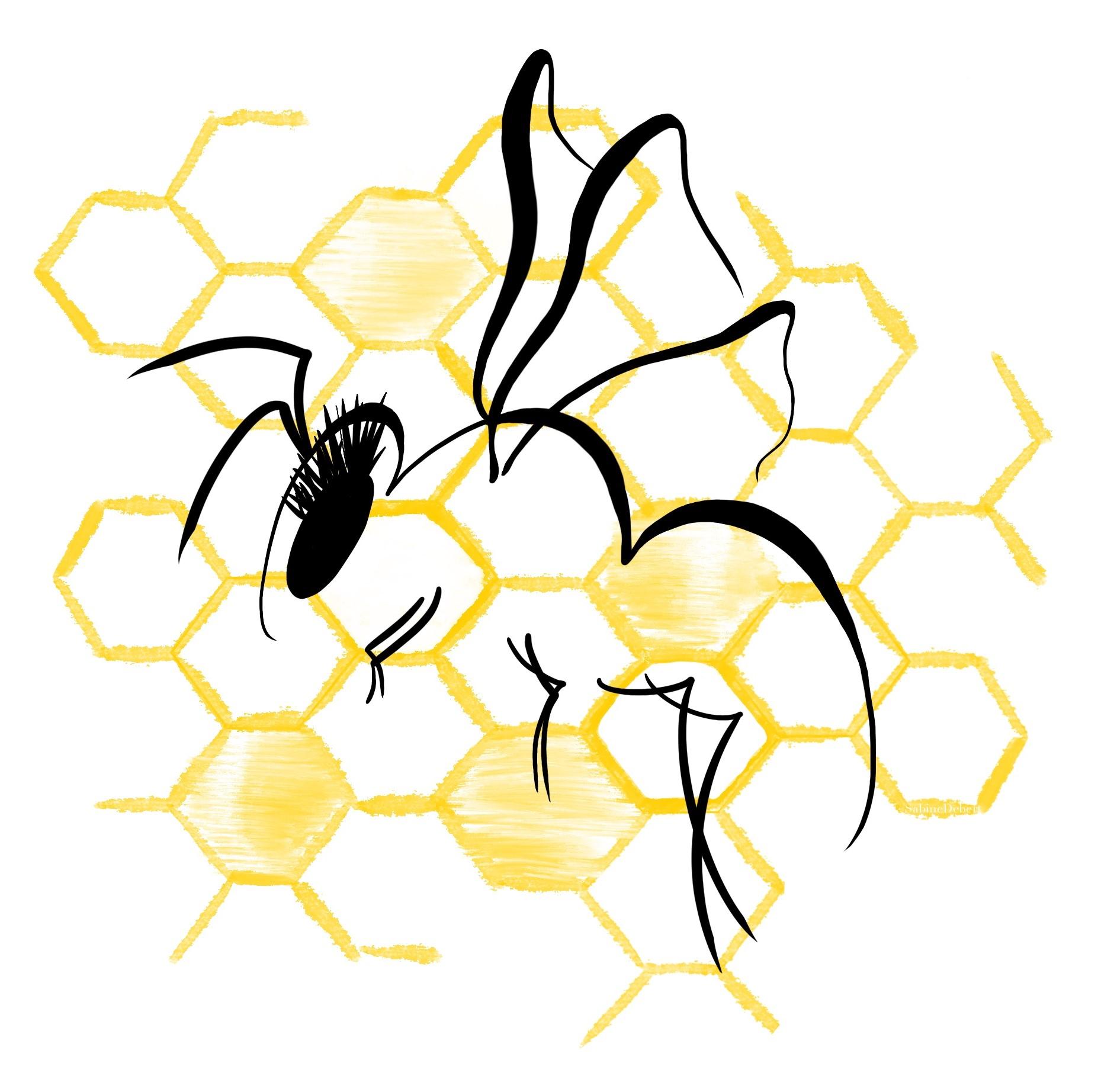 Honey Bee by Sabine Debert