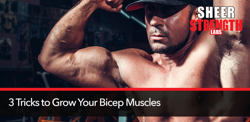 3-Tricks-to-Grow-Your-Bicep-Muscles