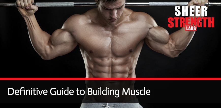 Definitive Guide to Building Muscle