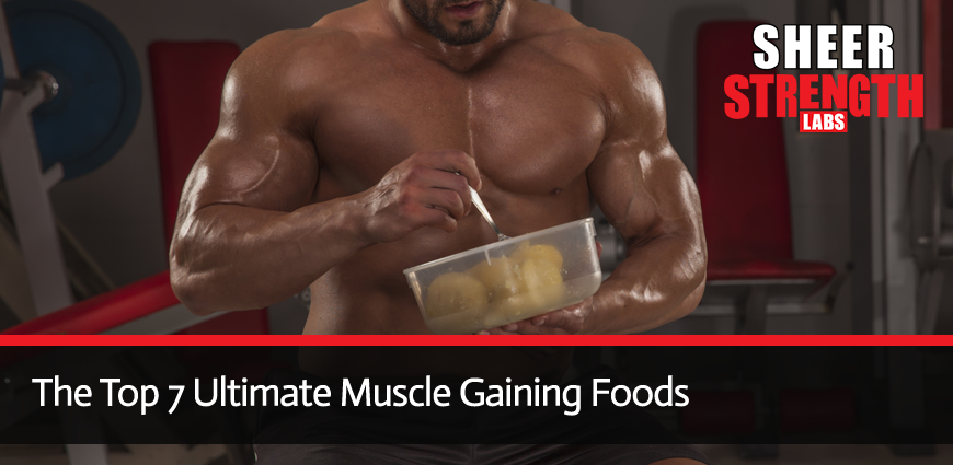 Muscle Mass and Diet Combination