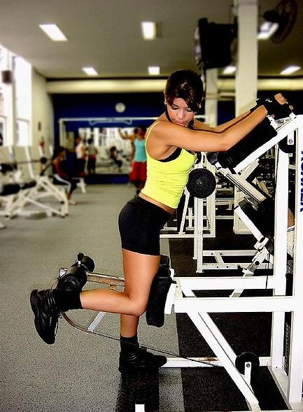 Workout Machines: Standard Preacher Curls
