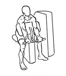 Workout Machines: Preacher Curl Machine