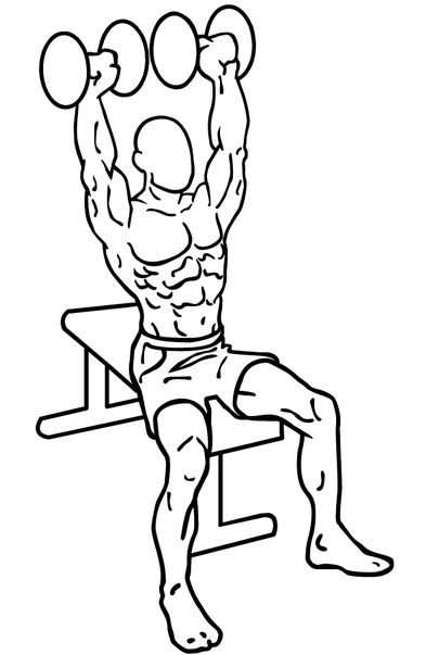 Exercises that Are Ultimate to Build Muscles Fast: Shoulder Press US Fifth Fleet