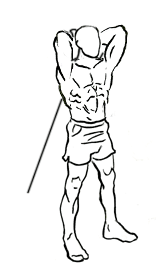 Arms Workout: Standing Triceps Extension