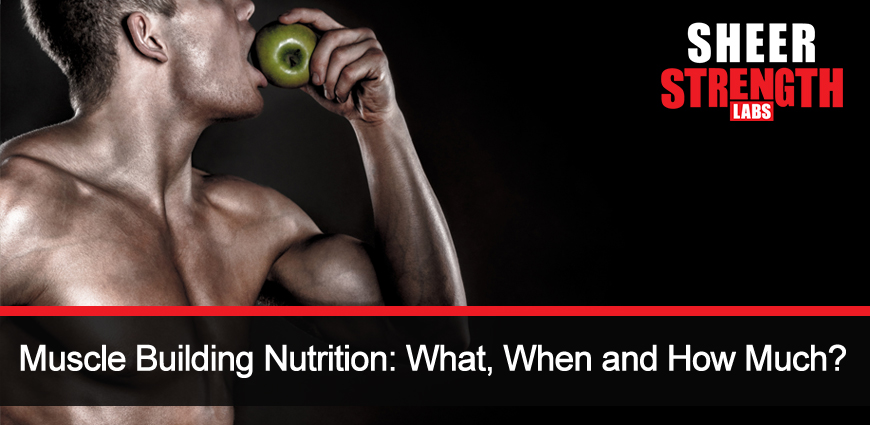 Muscle Building Nutrition to Help Build Muscles and Be Healthy