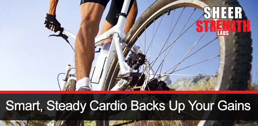 Cardio and Steady Heart Rate by Cycling