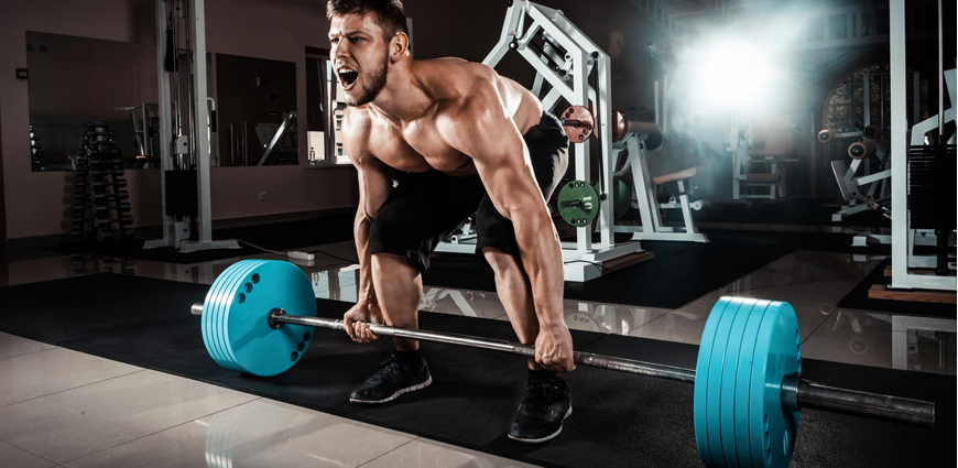 Fat Loss, Action Plans and Supplements