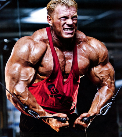Muscle Building Tips and Training Techniques