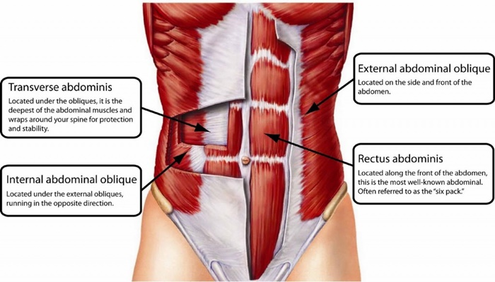 Exercise Tips? Activate Transverse Abdominis