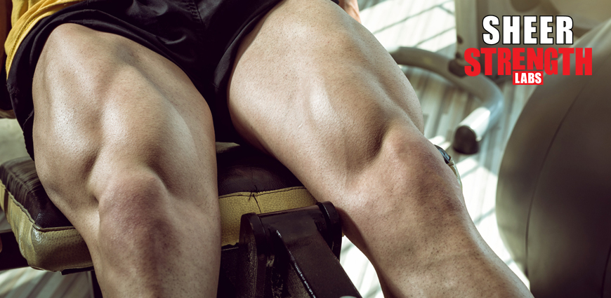 Huge Legs With Upper Body Muscularity