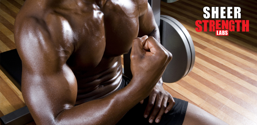 Bulk Muscles: How to Have the Perfect Body