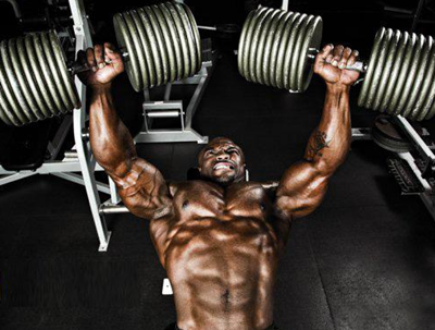 Bulk Muscles: Dumbbell Bench Press