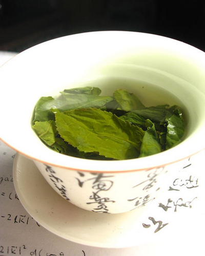 Fat Burning Foods: Green Tea