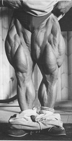 Leg Training Without Injury: Tom Platz Leg Workout