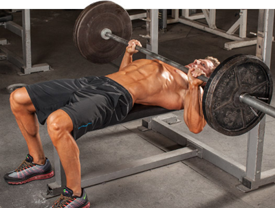 Massive Gains Training Exercises: Bench Press
