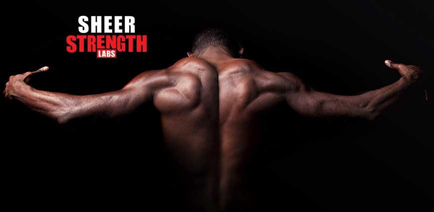 Building a Stronger Back - 21 Super Tips