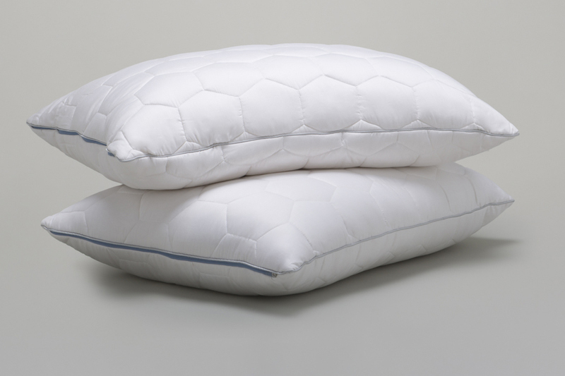 ECOSHEEX® Down Alternative Back/Stomach Sleeper Pillow