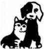German Shepherd Dog Mix Dog for adoption in Canoga Park, California - Warner