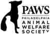 Domestic Shorthair Cat for adoption in Philadelphia, Pennsylvania - Penny