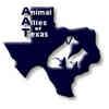 Domestic Shorthair Kitten for adoption in Garland, Texas - Jameson