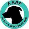 German Shepherd Dog Dog for adoption in Houston, Texas - Rocky 5