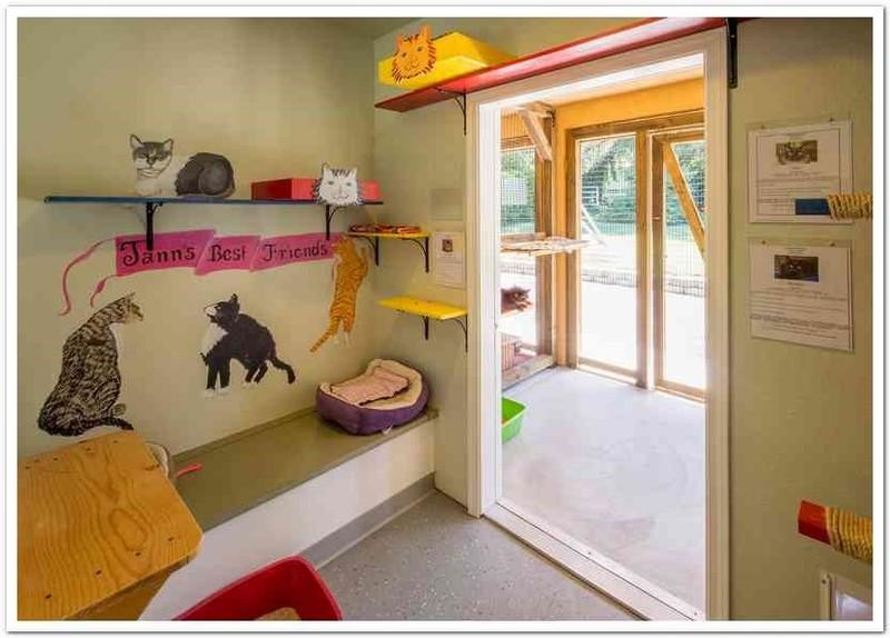 Cat Flap Bedroom Door