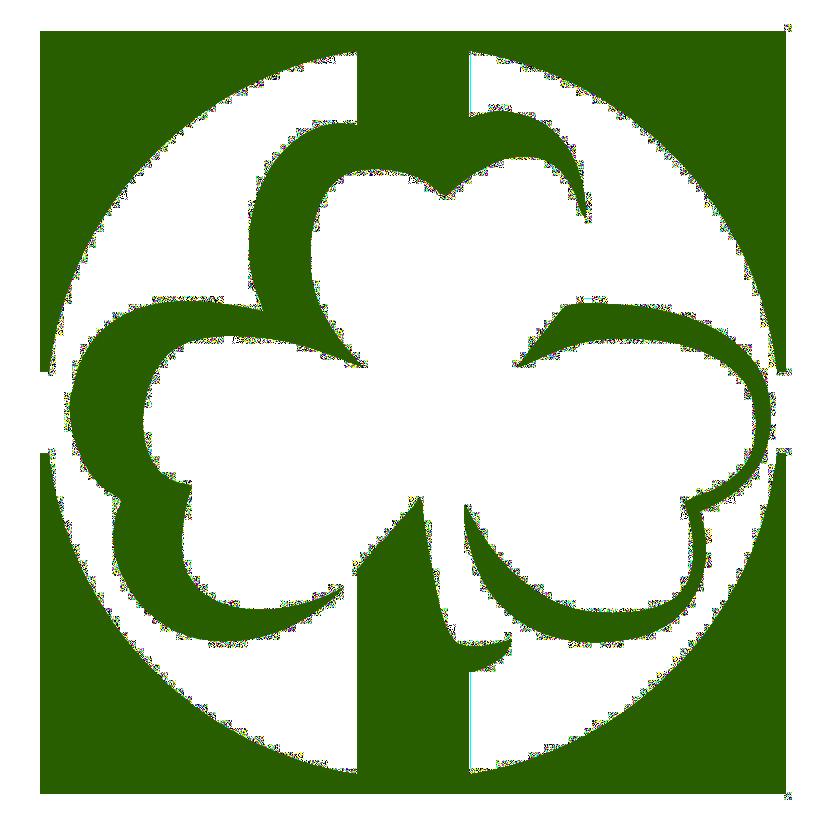Trinity Golf Trips's Logo
