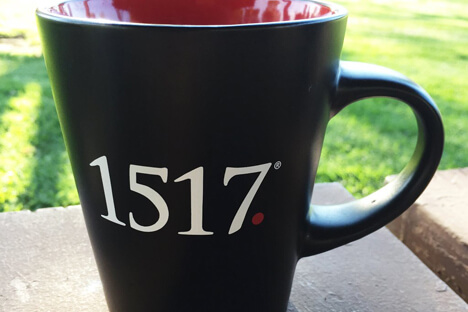 GRAB 1517 SWAG—2017 PRICE DROPS!