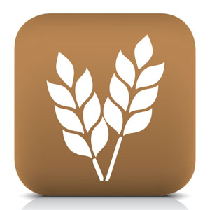 image of whole grain icon