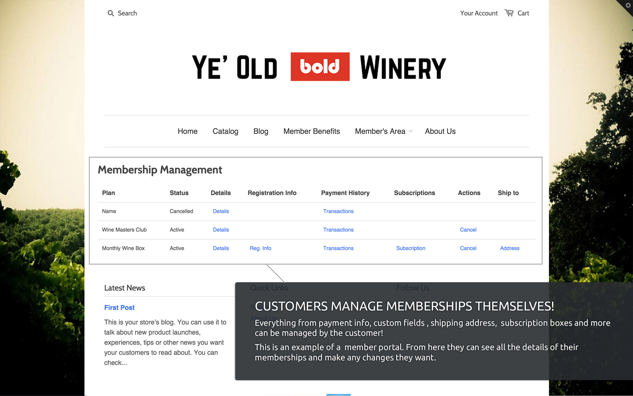 Recurring Memberships Ecommerce Plugins For Online Stores - What is recurring invoice online wine store