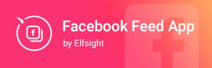 Facebook Feed App by Elfsight
