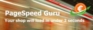 PageSpeed Guru