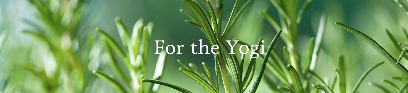 For the Yogi