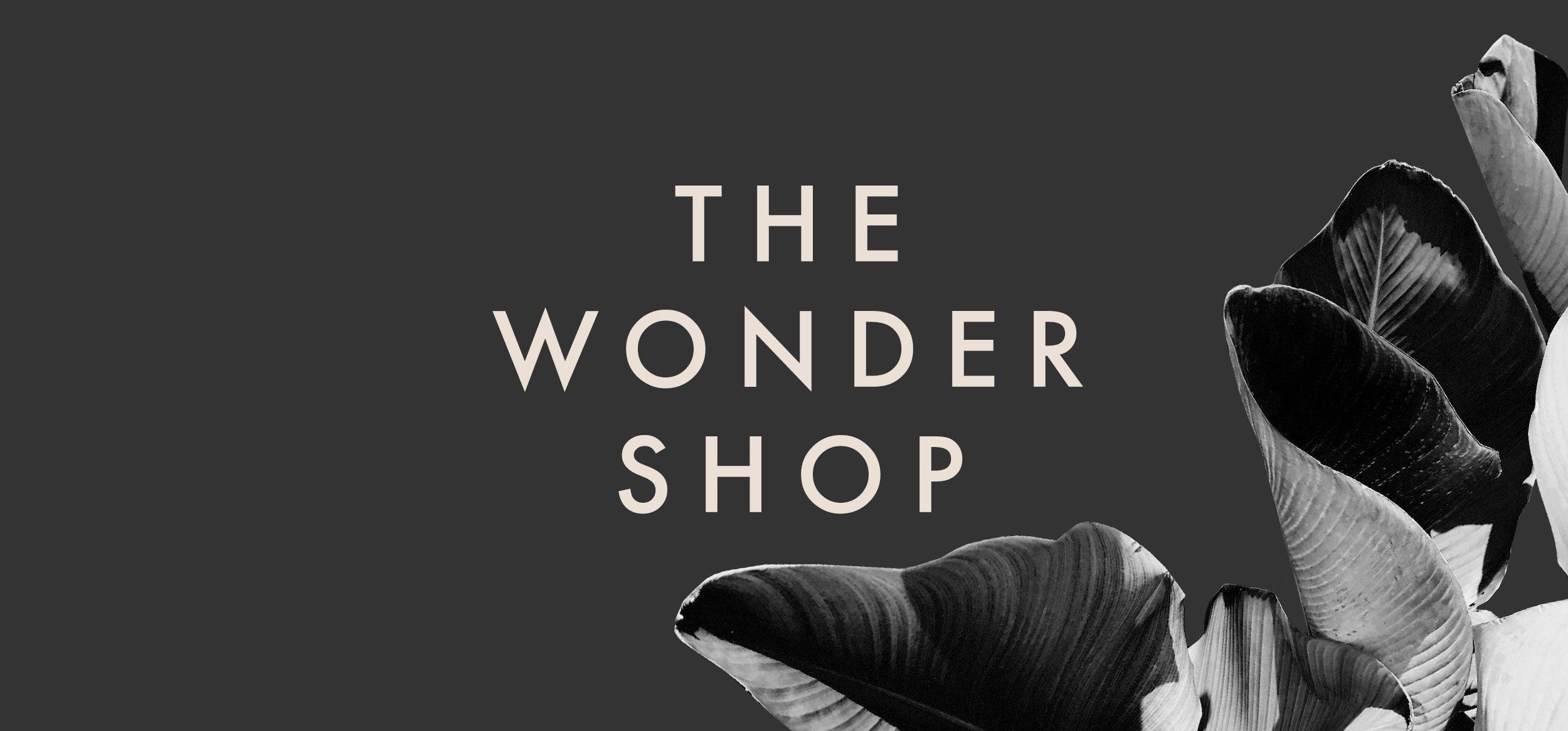 The Wonder Shop