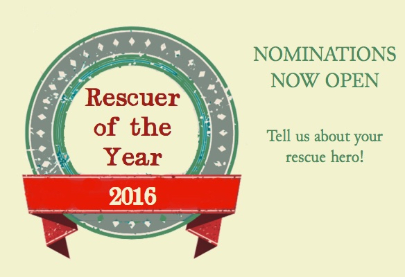 vote for the 2016 rescuer of the year now