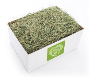 Timothy hay, orchard hay, gourmet hay, alfalfa hay